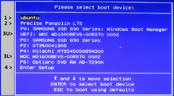 EFI_BOOT_MENU.JPG